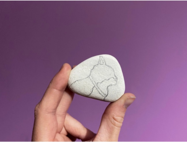 a hand holding a stone with outline