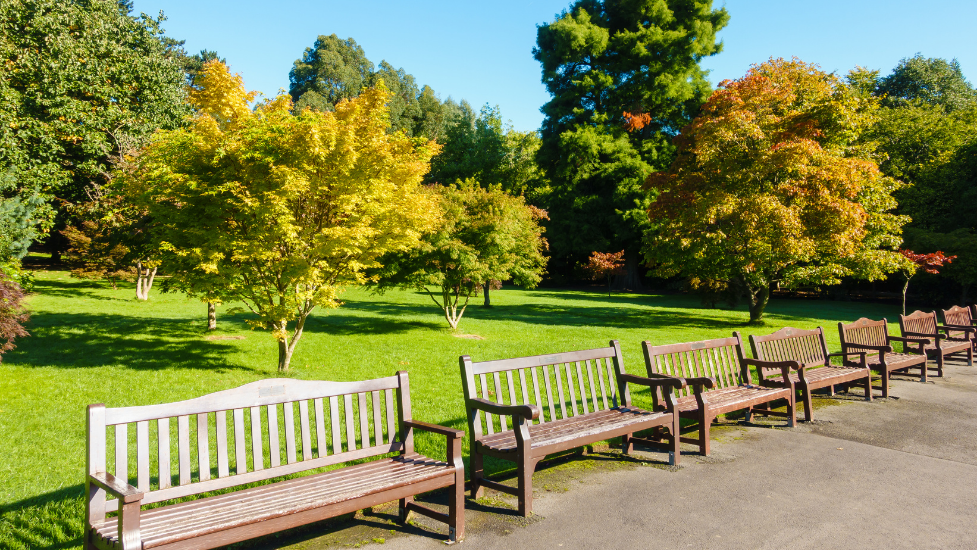 benches at Roath Park
