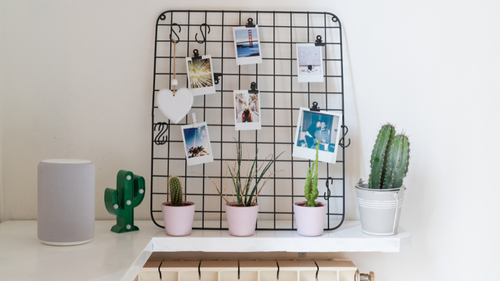 a metal grid with photos in it