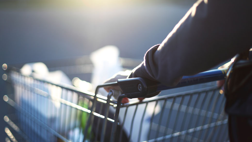 a person pushing a shopping trolley