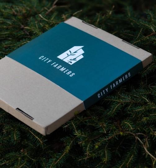 a box of green grass