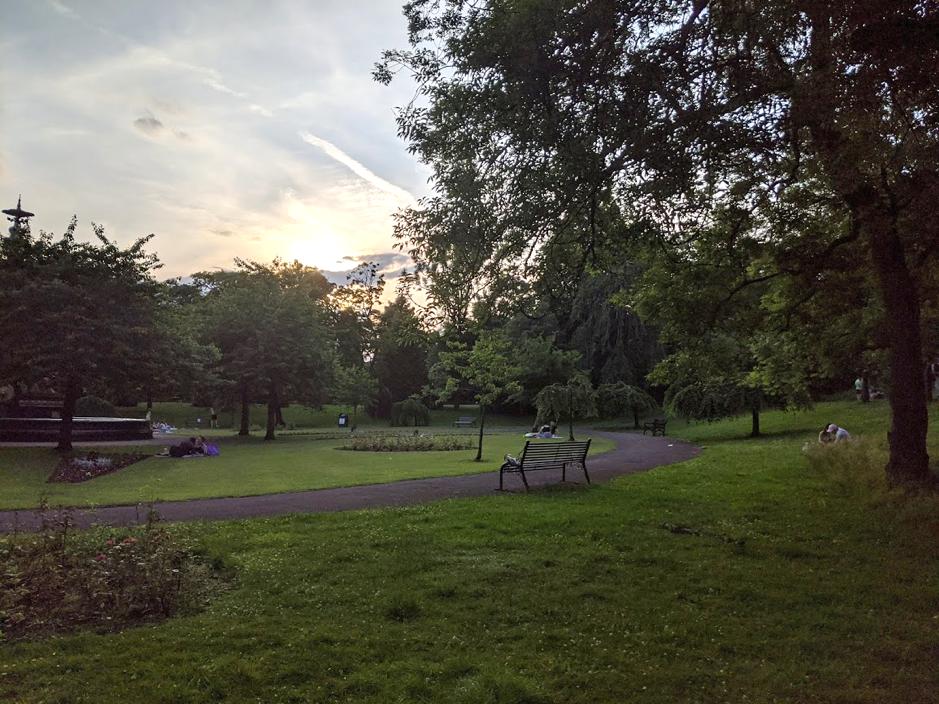 Alexandra Park, Trees, Grass
