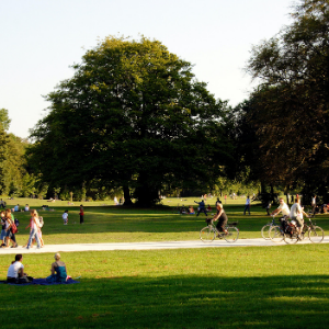a group of people in a park