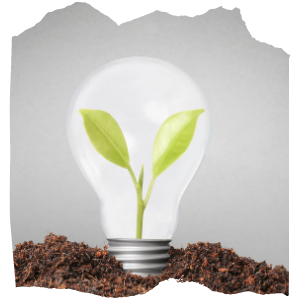 a light bulb in a soil with a plant growing in it