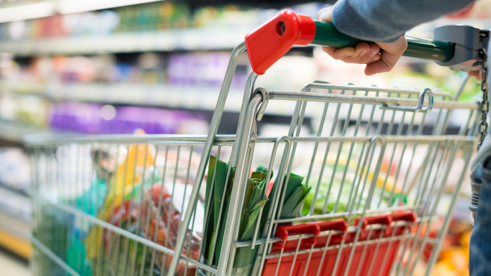 a close up of someone pushing a shopping trolley