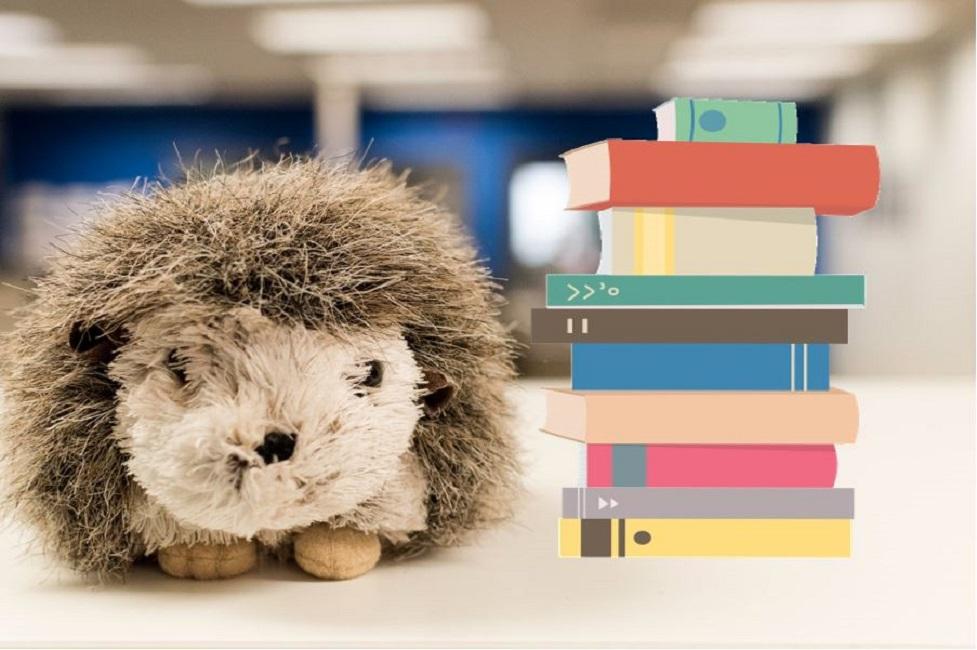 Hedgehog and books