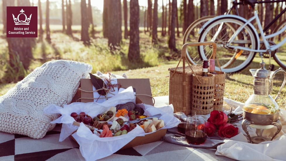 a picnic in a wooded park