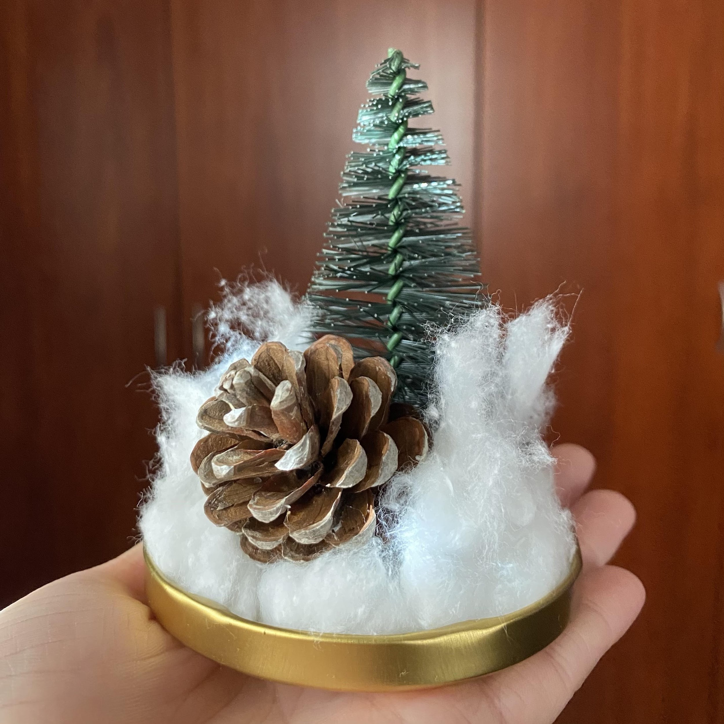close us of pinecone and tree
